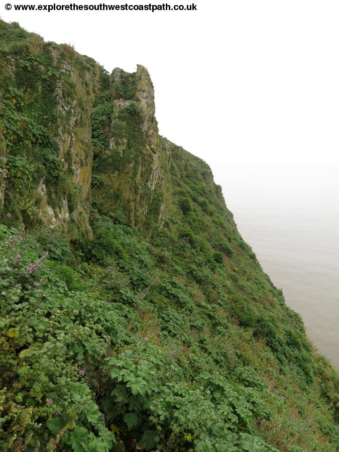 The Steep cliffs of Steep Holm